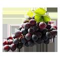 Ciemne winogrono