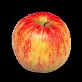 Jabłko Jonagold