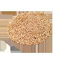 Nasiona quinoa